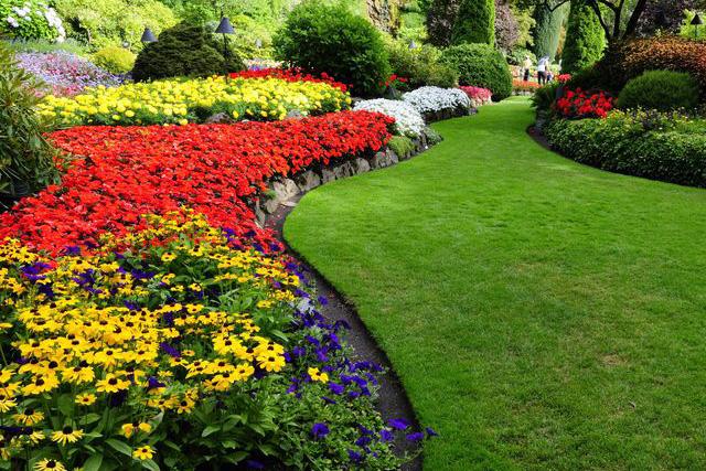 Gras In Tuin : Nieuw gazon in stappen tuin nest be