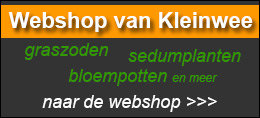webshopbanner-1